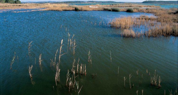 Laguna Santo André