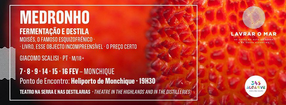 Medronho - Lavrar O Mar - Monchique